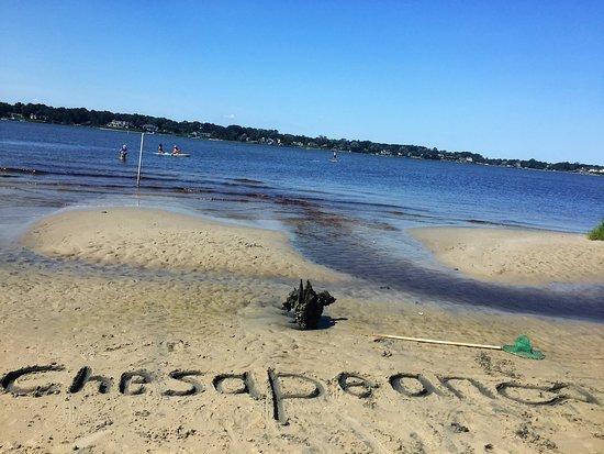 Chesapean Outdoors Virginia Beach