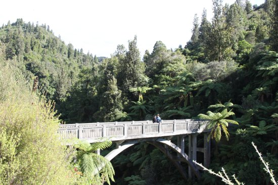 Owhango, New Zealand: Found! The Bridge to Nowhere