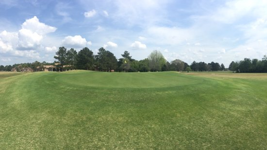 Alma, GA: The green on Hole #4