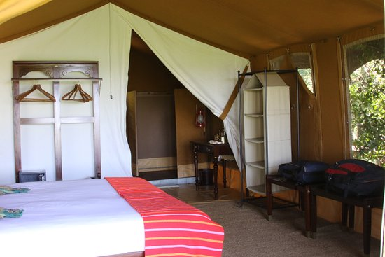 Elephant Pepper Camp : view of the inside of my tent with bedroom, electricity, bathroom, shower with hot water.