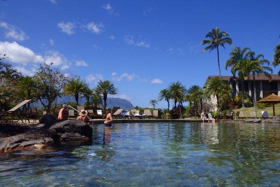 Hanalei Bay Resort : Looking from Pool to Hanalei Bay