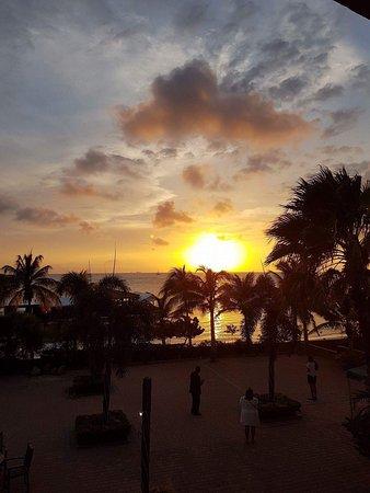 Aruba Surfside Marina: photo3.jpg