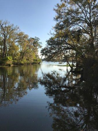 Tchefuncte River - Fairview Riverside State Park - Picture