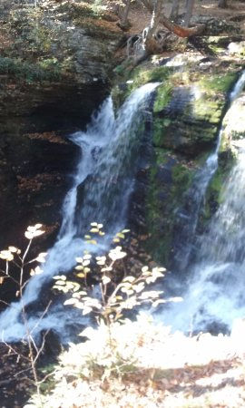Dingmans Ferry, PA: Just a sample look of the falls on the deck view.