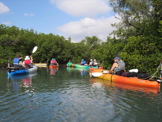 Fort Pierce, FL: Heading into the Mangrove's