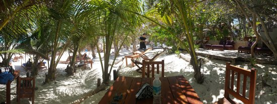 Dos Ceibas Eco Retreat : dining under the trees