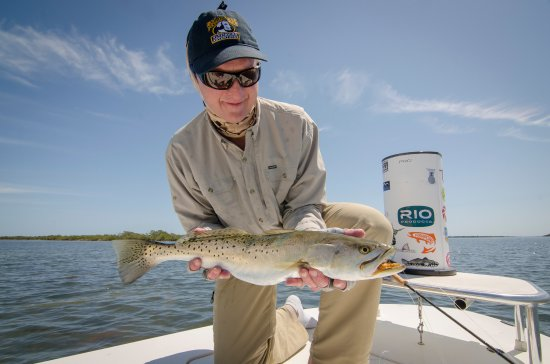 Edgewater, FL: My first Speckled Sea Trout on the fly