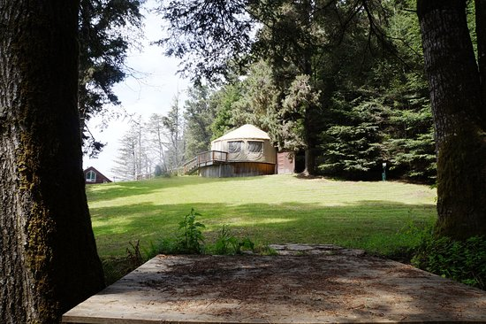 Little River, CA: Forest's Edge + Yurt