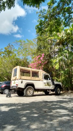 George Town, Grand Cayman: Our transport for the day - a real Land Rover! (Seen here at the Queen Elizabeth II Botanic Park