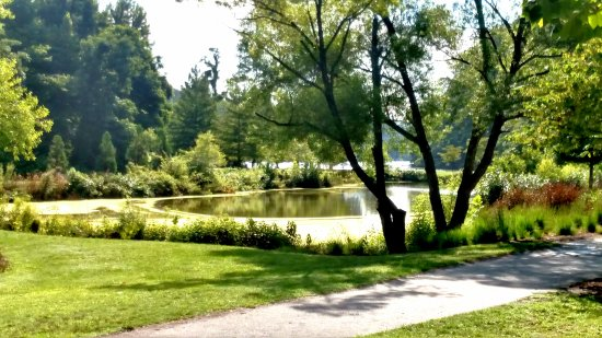 Lake Lure Photo