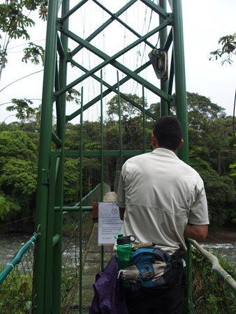 Selva Verde Lodge: photo6.jpg