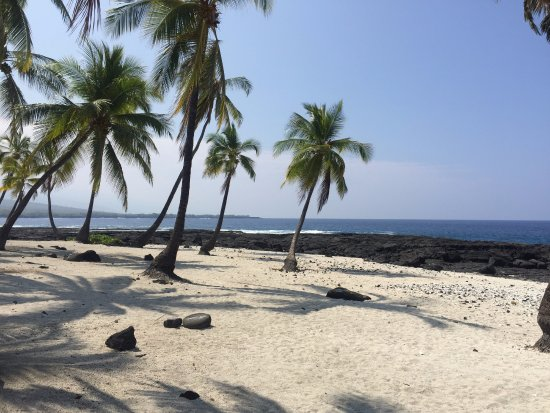 Pu'uhonua O Honaunau Park Picnic Area and Tide Pools