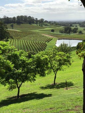 Singleton, Australien: photo1.jpg