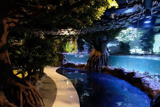 Jakarta Aquarium & Safari