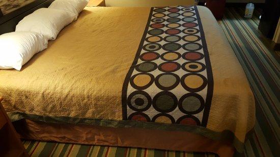 Meridian, MS: Horrible bedding