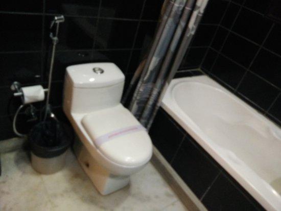 Enkay Residency V Block : WesternToilet & Bathtub