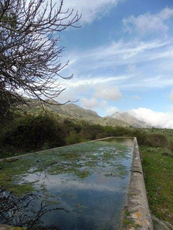 """Altavilla Milicia, Italie : una """"gebbia"""" nella vallata"""