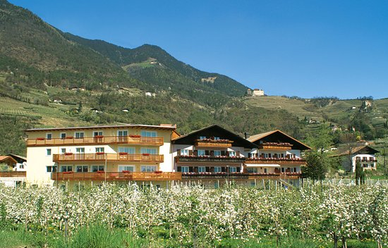 Hotel Elisabeth - Apfelbaumblüte