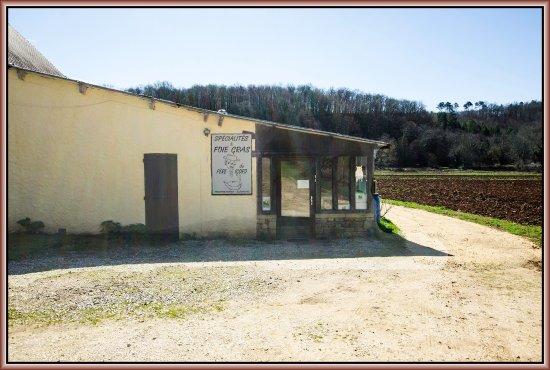 Montferrand du Perigord, France: Stage foie gras