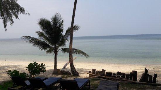 Rimba Resort Photo