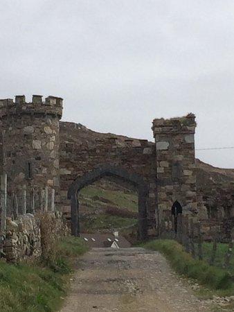 Clifden Castle: photo0.jpg