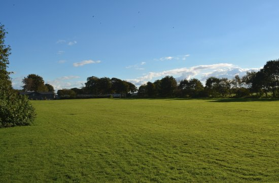 Cockerham, UK: Our large playing field - great for kids & dogs!