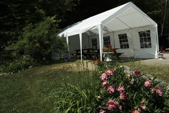 Holderness, NH: Great little tent for tea or a picnic - overlooking Squam Lake