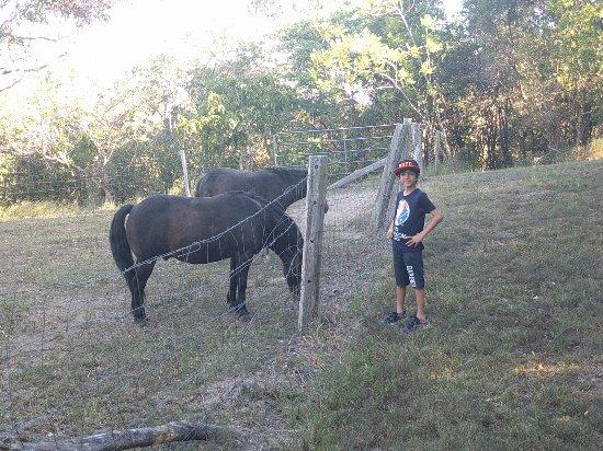 Cooroy, Australia: IMG_20170217_162813_large.jpg