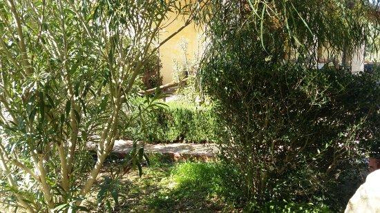 Santa Maria La Palma, Italia: Foto esterne dell ' agriturismo dove abbiamo mangiato
