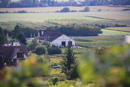 Domaine Riefle