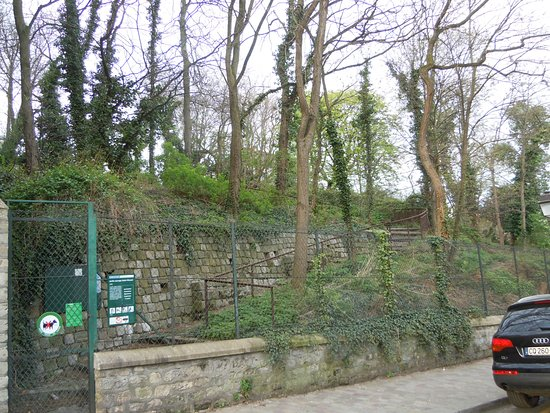 Jardin sauvage de st vincent pariisi ranska arvostelut for Jardin 75018