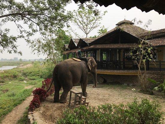 Sapana Village Lodge: photo2.jpg