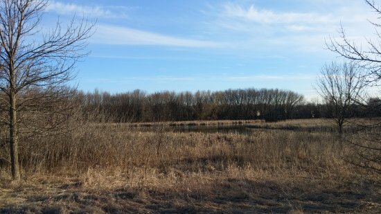 Elm Creek Park Reserve: Wide, open spaces!