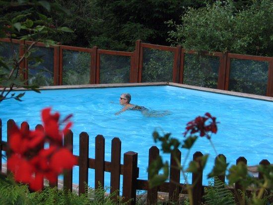 Saint-Nicolas-des-Biefs, France: piscine