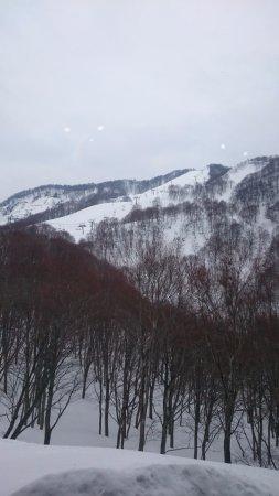 Ishiuchi Maruyama Ski Resort : レストランからの風景