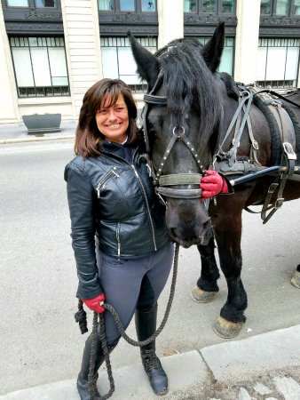 76 Carriage Company : Terri, Our Delightful Carriage Driver