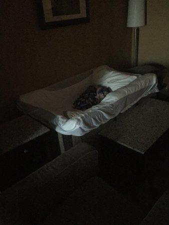 BEST WESTERN PLUS South Edmonton Inn & Suites: photo1.jpg