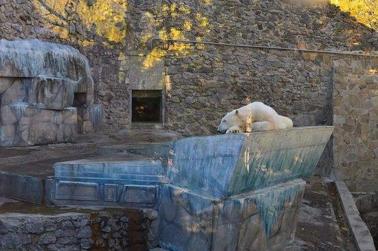 Nikolaev Zoo
