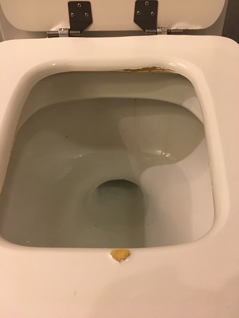 Sheraton Buenos Aires Hotel & Convention Center: toilet seat falling apart. shouldn't be that hard to replace.