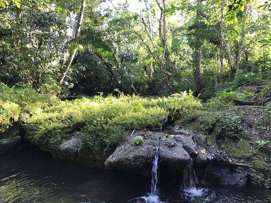 Unitedville, Belize : Taking a dip in the river