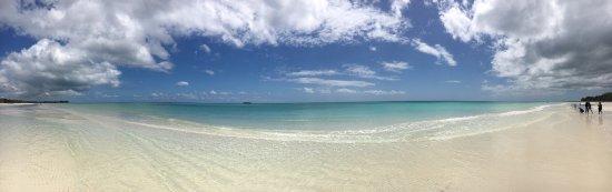 Gold Rock Beach: photo2.jpg