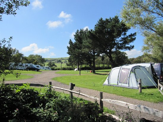 Wroxall, UK: Camping in Meadow Crcous