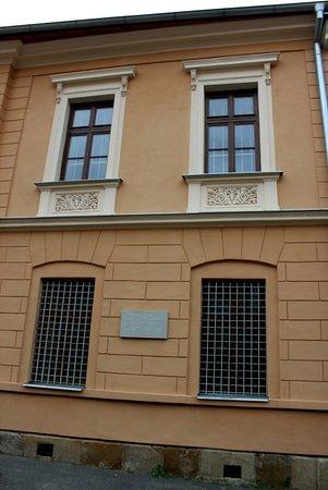 Czauczik house (Masiarska 14)