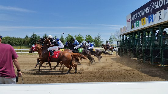 Ajax, Kanada: Live Racing Summer Sundays and Fall Mondays