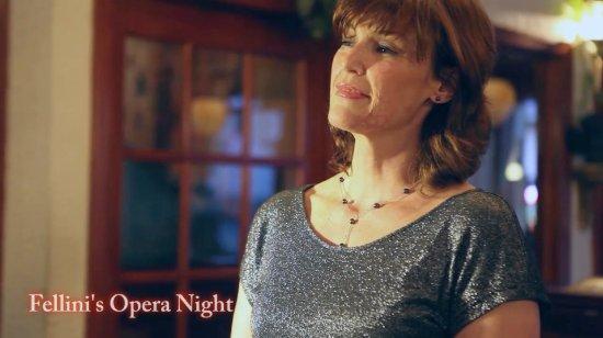Media, PA: Opera Night! Heidi Starr