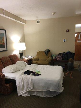 Drury Plaza Hotel St. Louis Chesterfield: photo1.jpg
