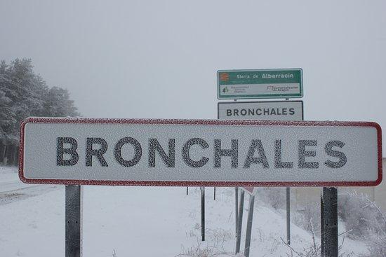Bronchales Photo