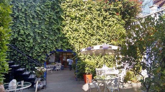 Hotel Casa Gonzalez: photo1.jpg