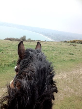 Studland Stables: Downland ride, looking out to swanage bay