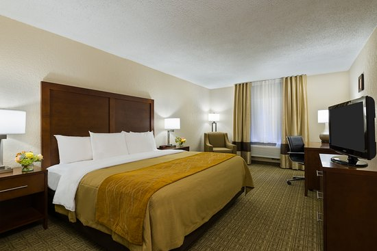 Comfort Inn St Louis - Westport: Guest room featuring one king size bed